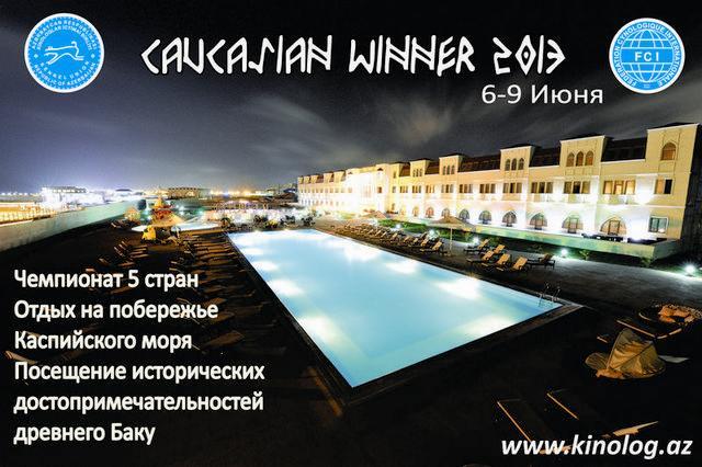 CAUCASIAN WINNER-2013 E49c5f10