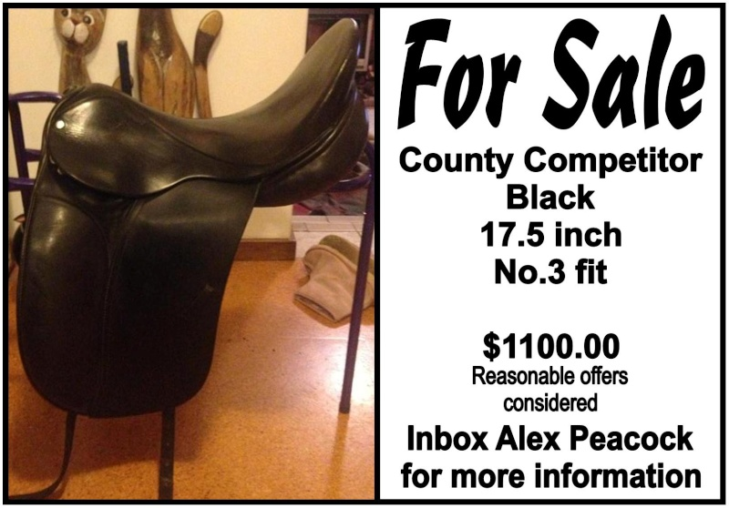 County Competitor FOR SALE For_sa10