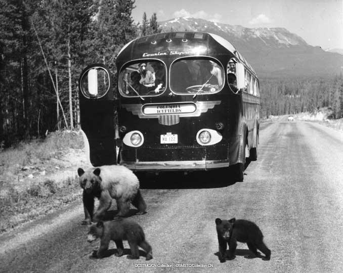 Autobus retro Attach10