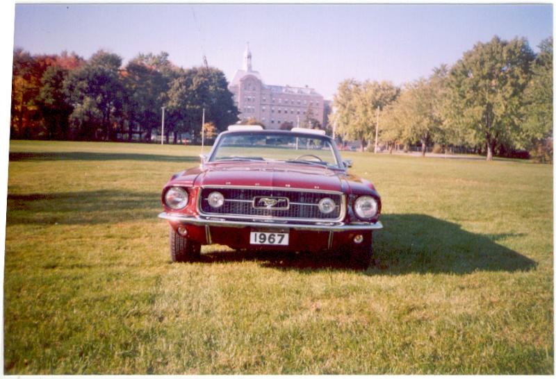 La Mustang 1967 du membre Renald Remillard Jacque18