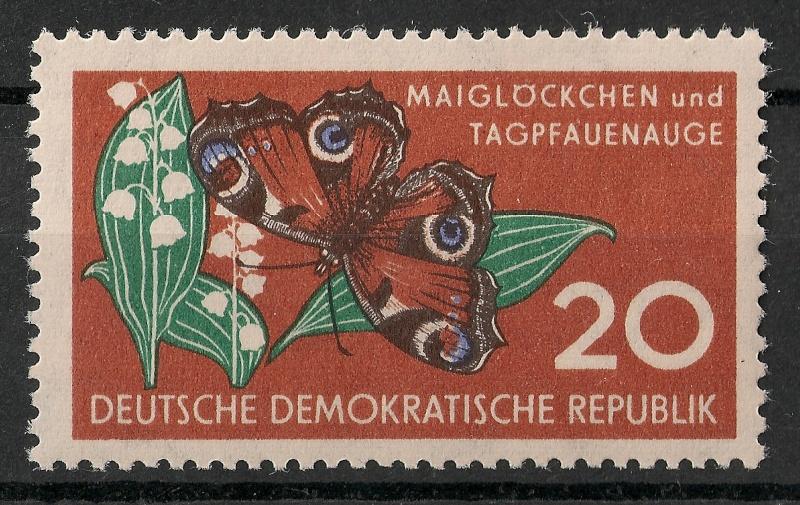 Schmetterlinge - Seite 3 Scanne91