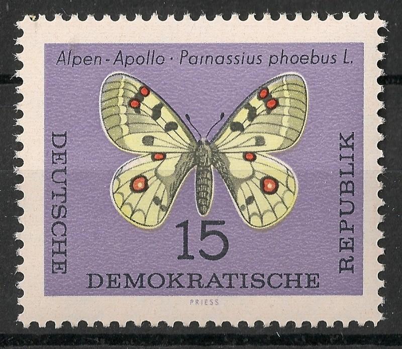 Schmetterlinge - Seite 3 Scanne94