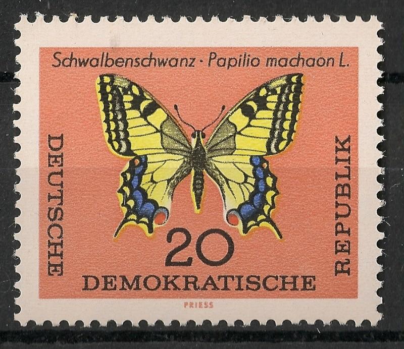 Schmetterlinge - Seite 3 Scanne95