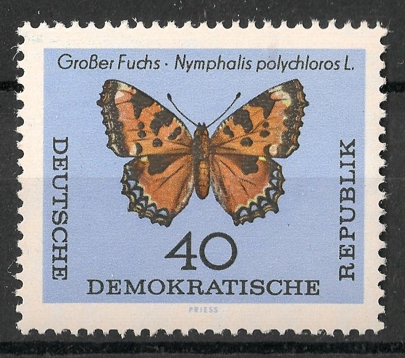 Schmetterlinge - Seite 3 Scanne97