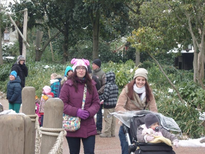 Séjour du 16 au 18 décembre 2012 au séquoia lodge + 1 journée magique - Page 2 Sn151113