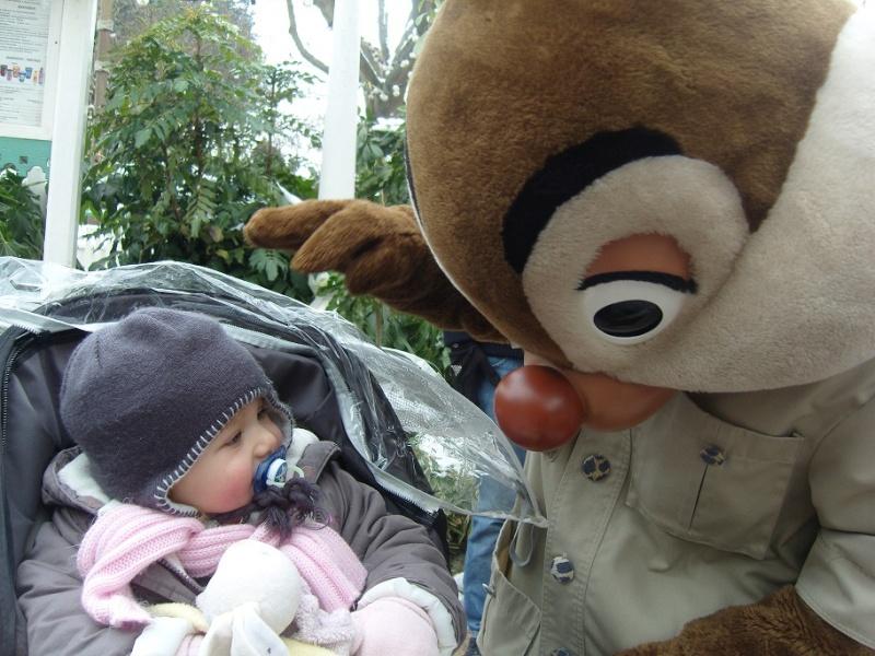 Séjour du 16 au 18 décembre 2012 au séquoia lodge + 1 journée magique - Page 2 Sn151119