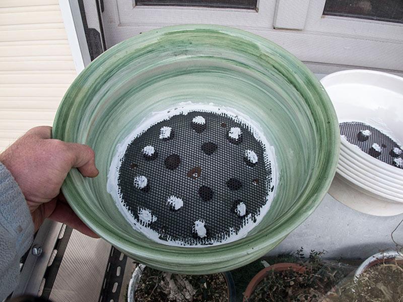 Vasi di coltivazione Sam_0010