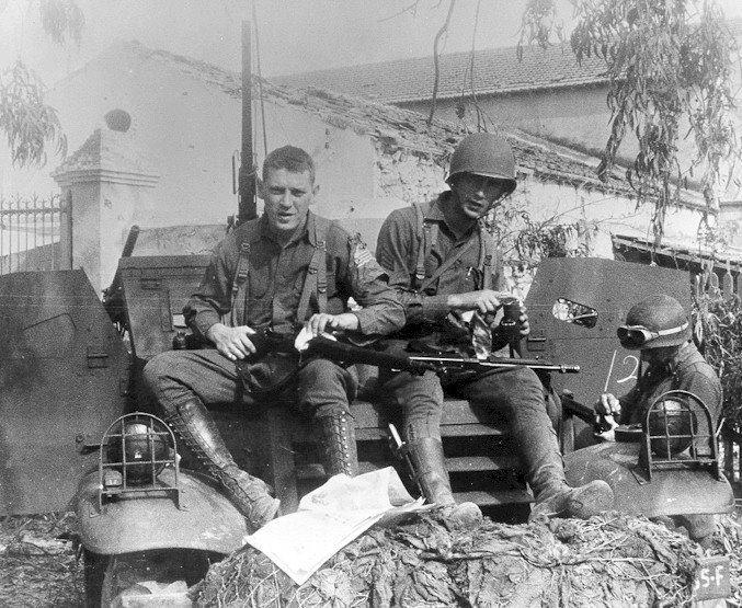 Springfield M1903A1 10853710