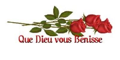Le secret des cathédrales et la Rose de Notre Dame Que_di15