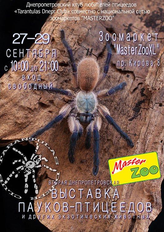 Выставка пауков-птицеедов 5764bf10