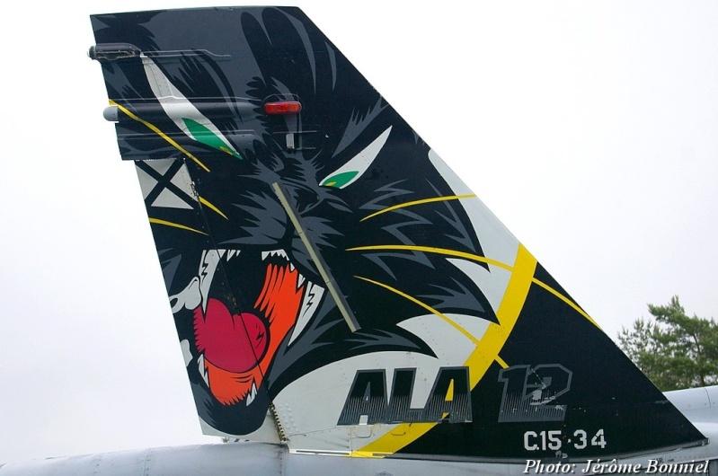 Tiger Meet 2013! Imgp7612