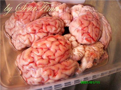 Вареные бараньи мозги 40cdd910