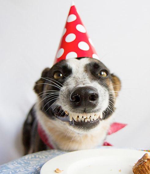 Happy Birthday Brewdude Happy-10