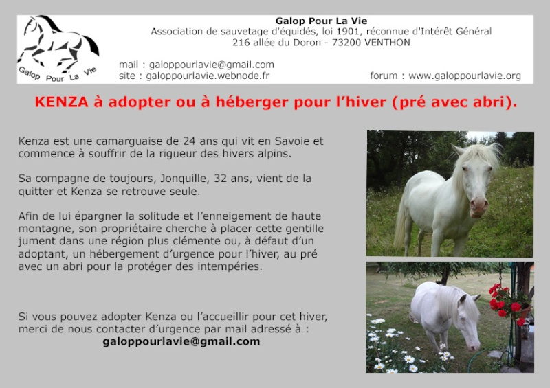 KENZA - accueillie par une adoptante GPLV dans le Rhône en novembre 2014 Hyberg13