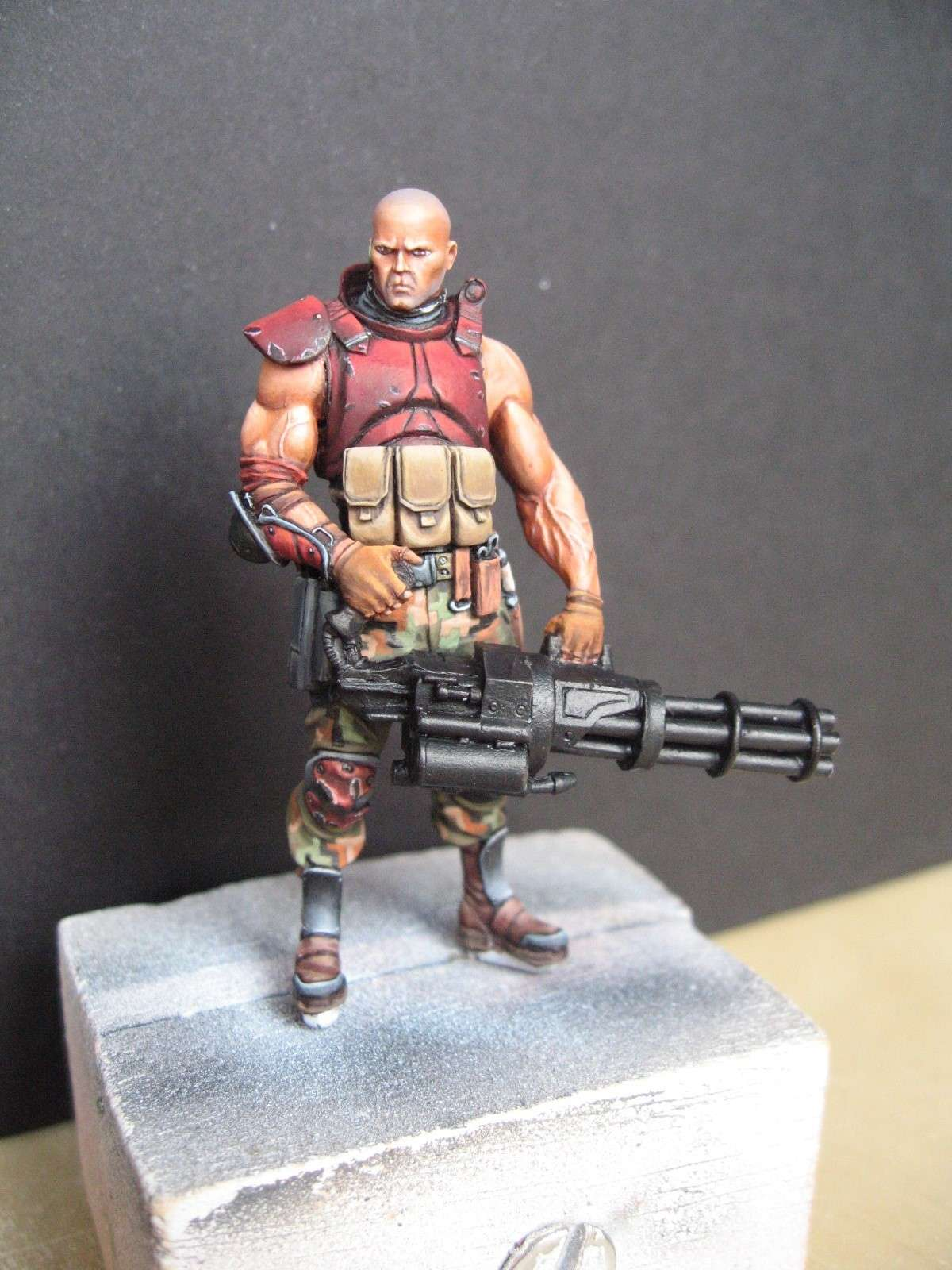 serpentian commando - ANDREA 54mm Img_3026