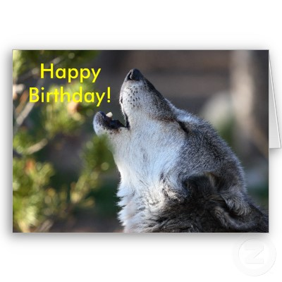 Joyeux anniversaire à Loup Joyeux10