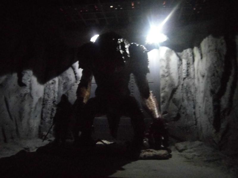STAR WARS : Palais de Jabba, Rancor grotte xxl - Page 3 Cimg3039