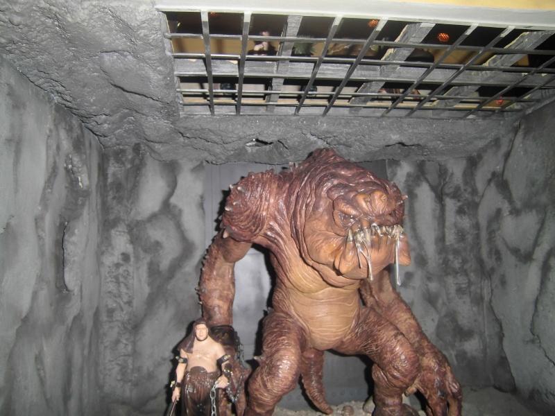 STAR WARS : Palais de Jabba, Rancor grotte xxl - Page 3 Cimg3041