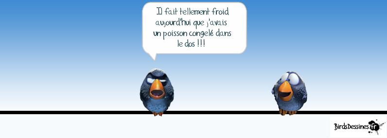 Les Birds - Page 4 13648510