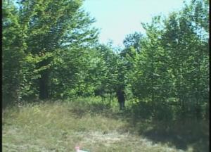 Speaking for Trees - 2004 12_30010
