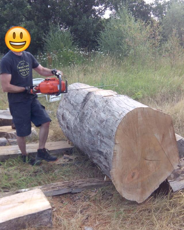 Débit d'un tronc de platane à la tronçonneuse 02tron10