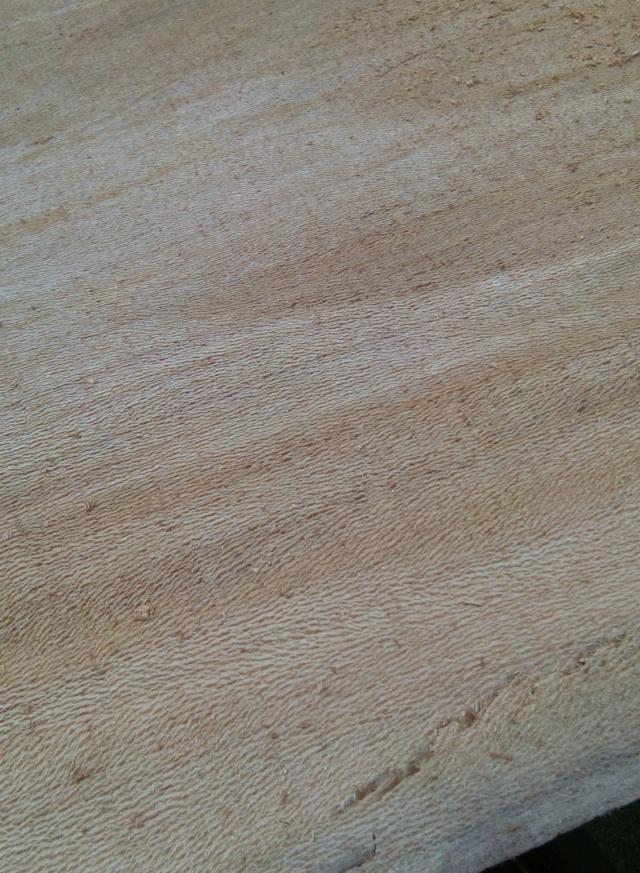 Débit d'un tronc de platane à la tronçonneuse 07bois10