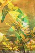 Atelier de Givre (je suis de retour... enfin :] ) [0/1] Avatar15