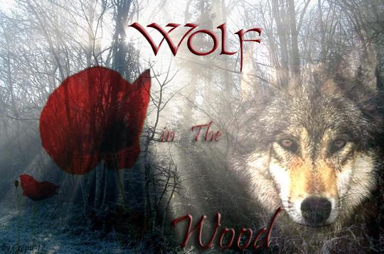 Atelier de Givre (je suis de retour... enfin :] ) [0/1] Wolf_i10