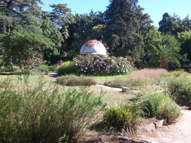 (34) La serre Martins - Jardin des plantes de Montpellier - Page 2 Serre155