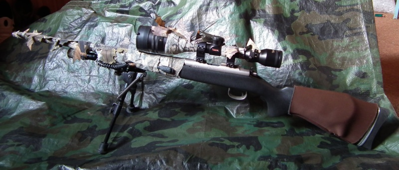 quel munition pour la 22lr Cz45210