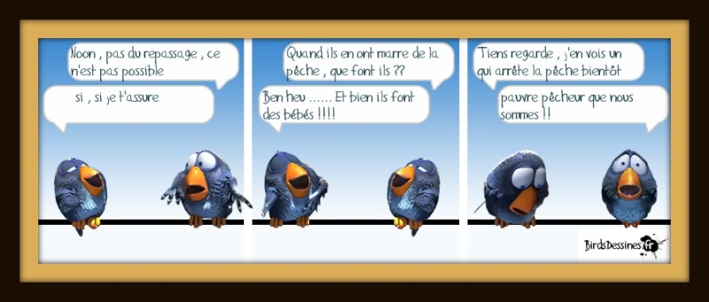BirdsDessinés 13639311