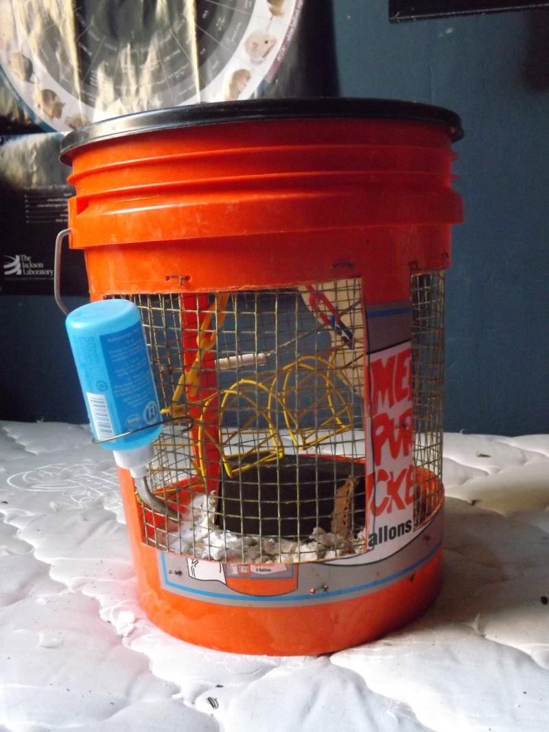 bucket bins for sale! Bucket10
