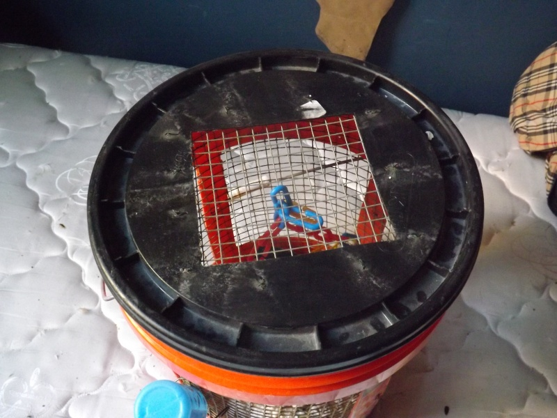 bucket bins for sale! Bucket11