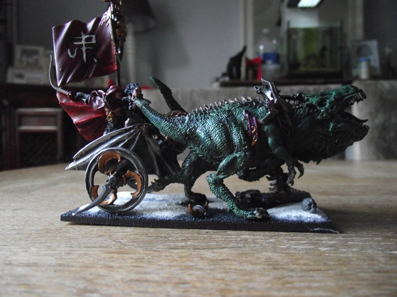 Char elfe noir Dscf1010
