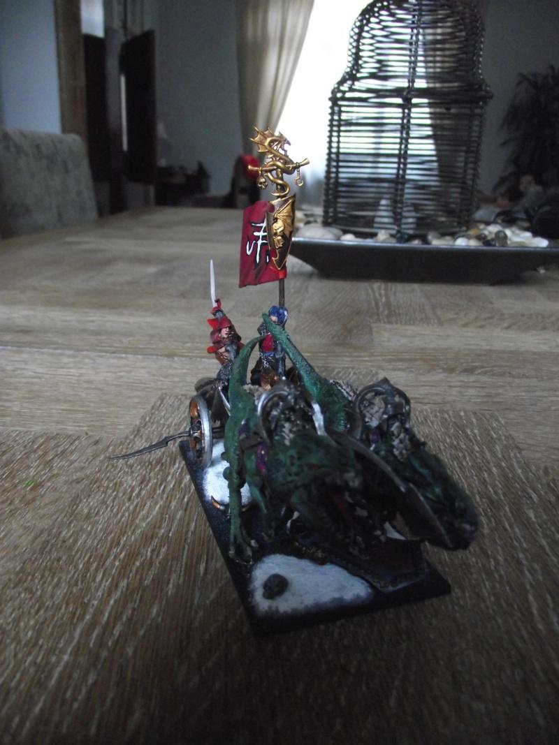 Char elfe noir Dscf1012