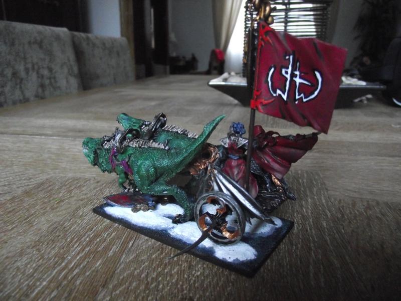 Char elfe noir Dscf1013