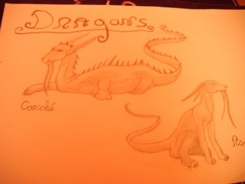 Nos dessins - Page 4 Dscf0022