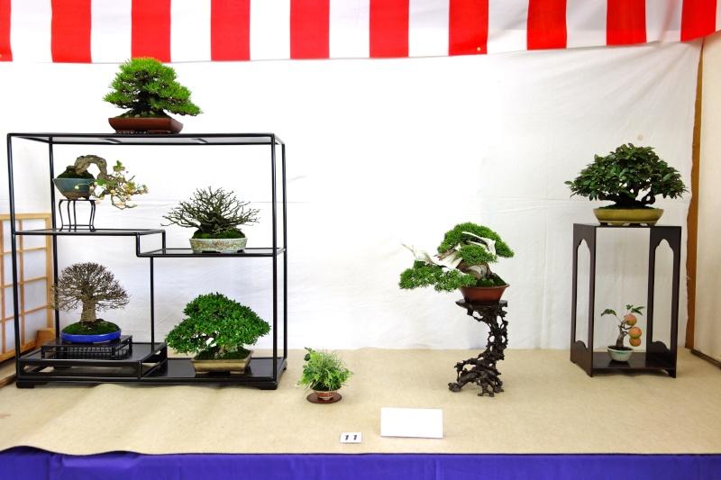 Higo Gayu kai annual exhibition 2014 Dsc01410