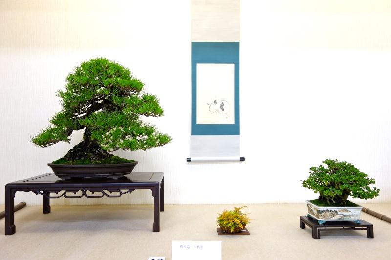 Higo Gayu kai annual exhibition 2014 Dsc01418