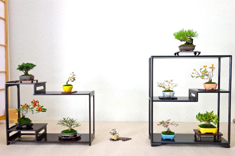 Higo Gayu kai annual exhibition 2014 Dsc01419