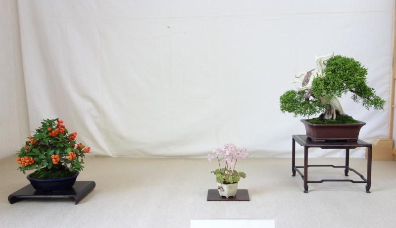 Higo Gayu kai annual exhibition 2014 Dsc01426