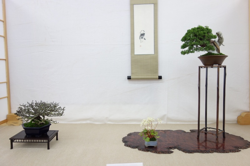Higo Gayu kai annual exhibition 2014 Dsc01434