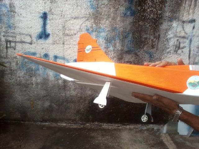 Jato Mirrage 2000 EDF 90mm 6S. (Construtor Elcio). 2011