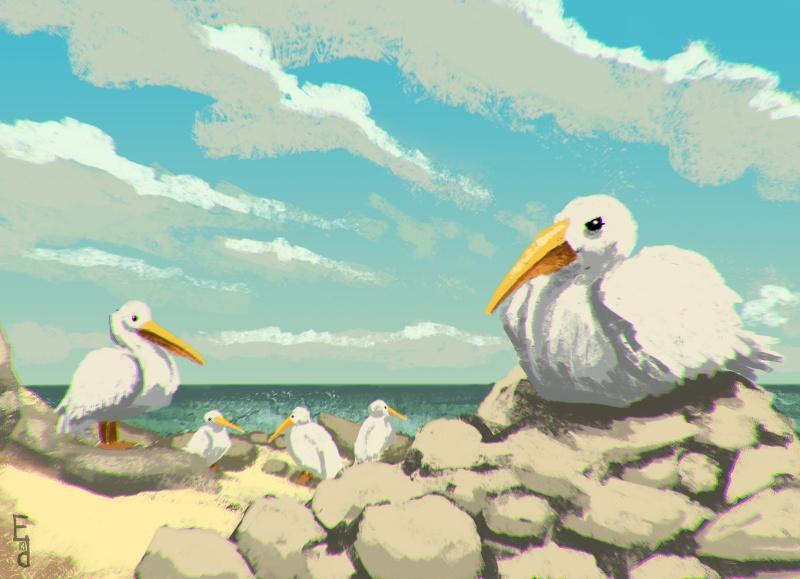 EDerelict's créationzz [GORE?] Birds_10