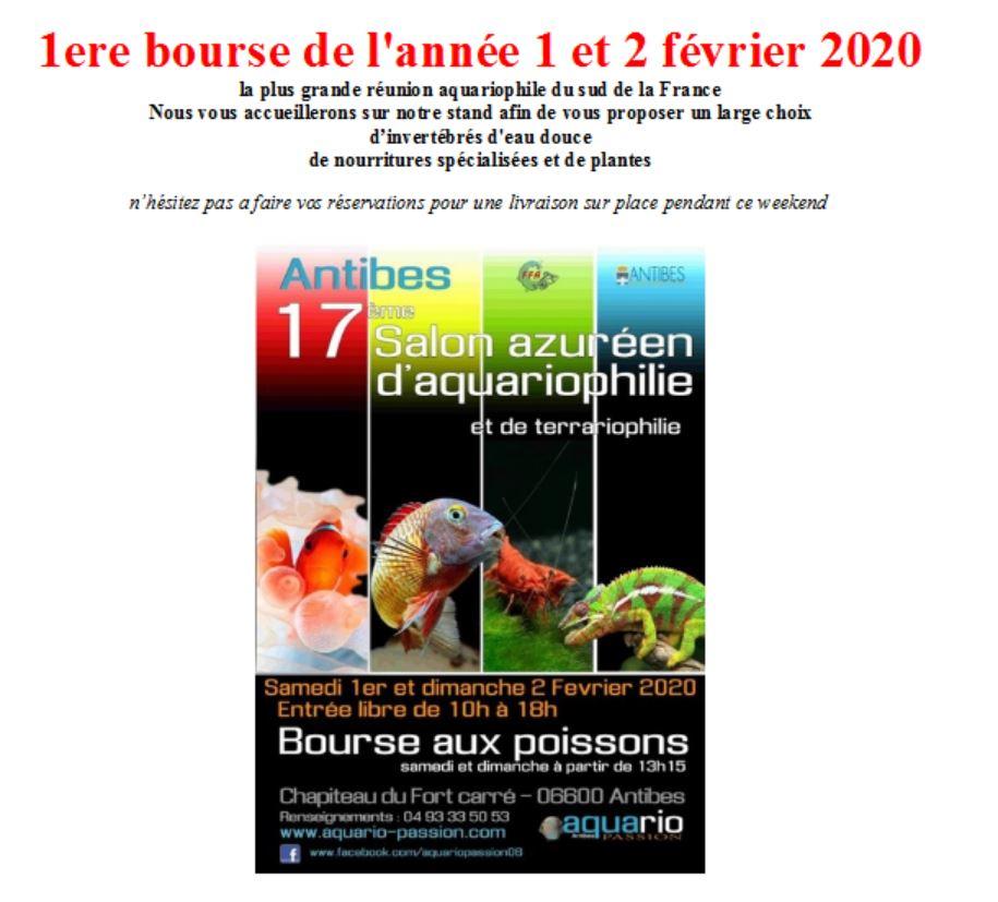 Bourse aquariophilie à Antibes  les 1 & 2 février 2020 Aquapa11