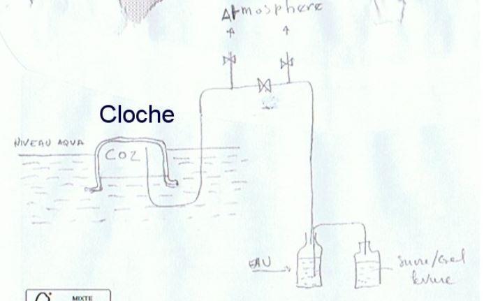 Paramètres de l'eau complètement modifiés Cloche11