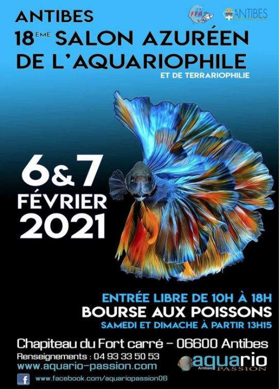 Bourse aquariophilie à Antibes  les 1 & 2 février 2020 Salon_10