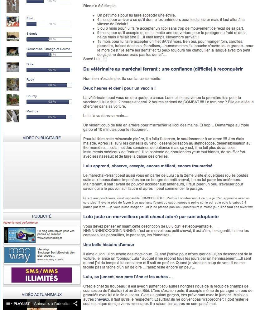 LUTSIANO dit LULU- ONC Selle né en 2004 - adopté en mars 2011 par Isaline - Page 3 Captur11