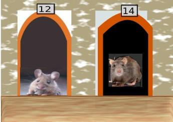 Le rat et la souris 2018-088