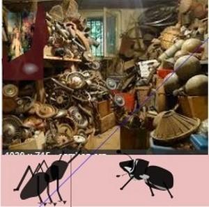 Le scatabé et la fourmi 2018-175